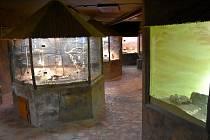 Oddělení plazů Zooparku Chomutov