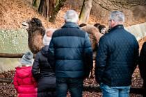 Chomutovský Zoopark otevře ve čtvrtek.
