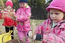 V PŘÍRODĚ. Děti se naučily víc o rostlinách, stromech i zvířatech. Na vzduchu a v lesích trávily celé dny.