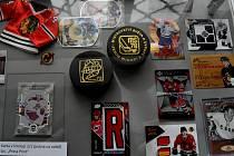 Na výstavě hokejových kartiček se najdou opravdové unikáty. Jsou tu hokejové legendy z celého světa, ale také v silném zastoupení Piráti Chomutov.
