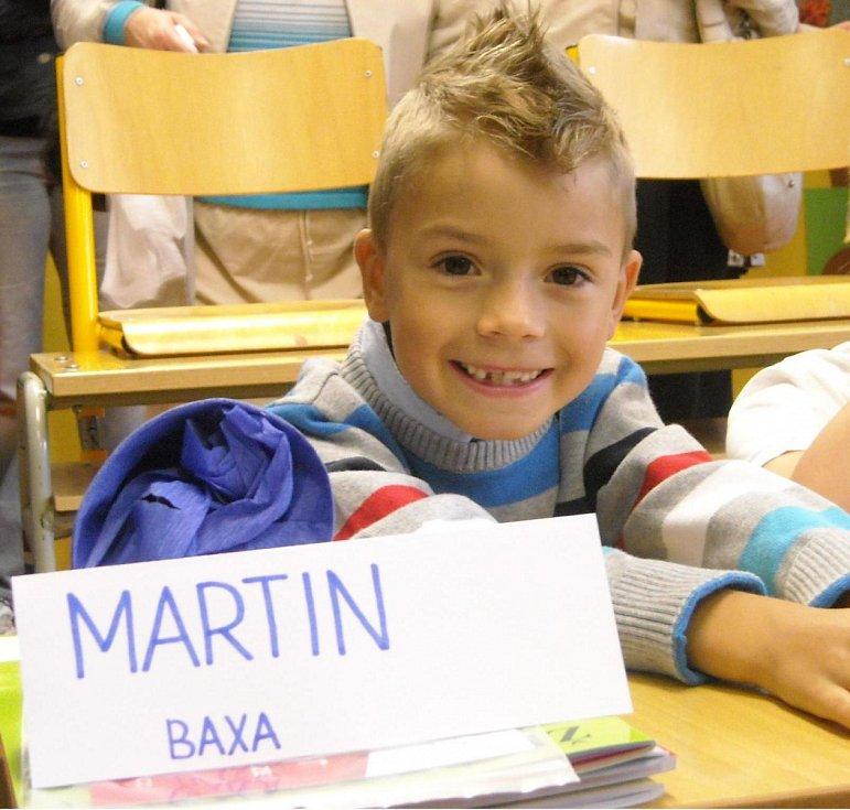 Martin Baxa, 1.A, ZŠ Březenecká, Chomutov.