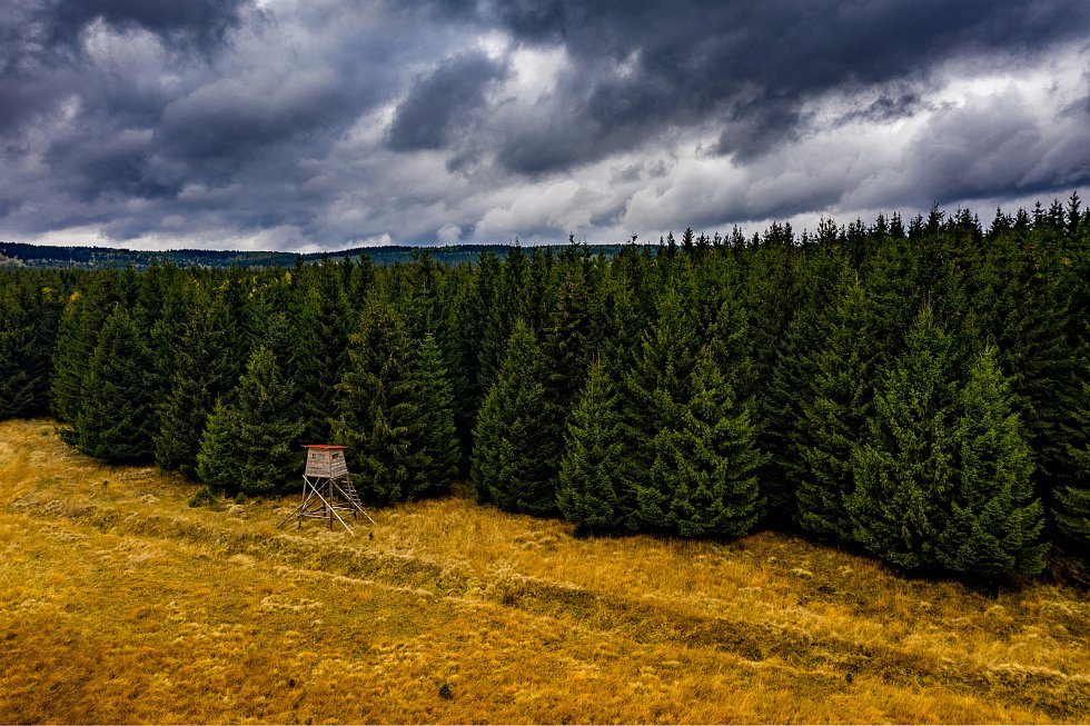 Louka za obcí Výsluní v Krušných horách. (19.10.2020)
