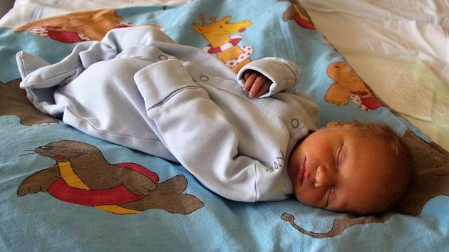 Antonín Bartl se narodil mamince Barboře Bartlové a tatínkovi Antonínovi Petránkovi z Kadaně 21. ledna 2019 v 17.17 hodin. Měřil 47 cm a vážil 2,52 kg.