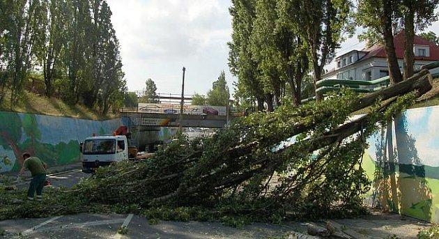 Topoly přehradily silnici, kterou už dříve uzavřeli silničáři.
