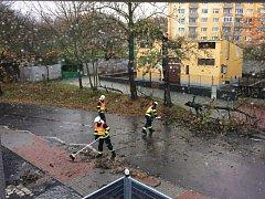 Hasiči strom odklidili během několika minut.