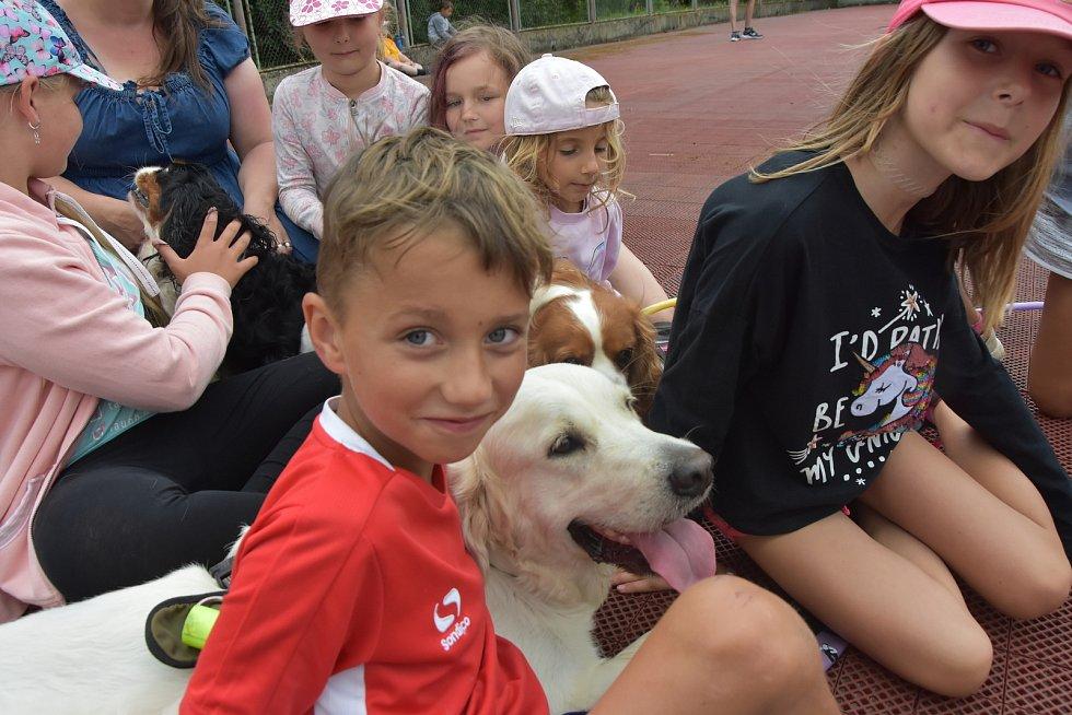 V Zásadě u Kadaně táboří pionýrská skupina z Ústí nad Labem. S sebou má kanisterapeutické psy, se kterými si děti mohou hrát a mazlit se.