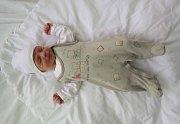 Své první miminko přivedla na svět 20.2.2017 ve 3:38 hodin v kadaňské porodnici maminka Gabriela Streicherová z Panenského Týnce.Stellinka po příchodu na svět v kadaňské porodnici měřila 47 cm a vážila 2,35 kg.