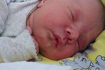 Emily Balogová narozena 22.1.2020 8:55. Rodiče Helena Balogová, Lukáš Schveiner ze Žatce  Foto: archiv rodiny