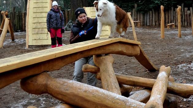 KLADINA. Jak mohou psi zvládnout jednotlivé prvky ukázali kynologové z Březenecké při sobotním otevření hřiště.