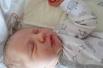 Alice Dvořáková se narodila 20.2. v 0:23. Vážila 3000g a měřila 49cm. Rodiče Andrea a Daniel Dvořákovi z Jirkova z ní mají radost.