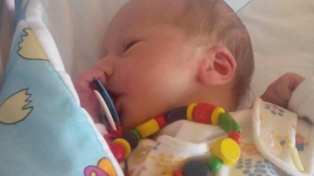Dne 10. září 2015 v 17,13 hodin se v chomutovské porodnici Janě Heidlerové a Arnoštovi Heidlerovi z Jirkova narodil syn Arnošt Heidler, který vážil 2.900g a měřil 50 cm. Tatínek se synem nemají stejné jen jméno, ale i narozeniny.