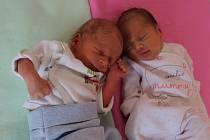 Dvojčátka Nela Mirgová a Dominik Mirga se narodila mamince Martině Heischmannové a tatínkovi Dušanovi Mirgovi z Jirkova 17.9.2019. Nelinka měřila 46 cm a vážila 2,35 kg a narodila se v 16:01 hodin. Dominik měřil 45 cm a vážil 2,09 kg a narodil se v 16:04