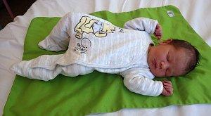Jakub Milasevič se narodil 6. března 2018 ve 21.40 hodin rodičům Michaele a Pavlu Milasevičovým z Hořence. Vážil 3,95 kg a měřil 53 cm.
