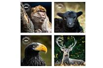 Do seznamu zvířat, kterým můžete plnit misky, přidal zoopark 4 nové druhy.