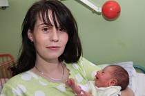 Dcerka Viktorie Vaňková se narodila mamince Jitce Vaňkové z Chomutova 22.11. 2008 ve 2.26 hodin v chomutovské nemocnici. Holčička měří 48 centimetrů a váží 2,500 kilogramů. . . .