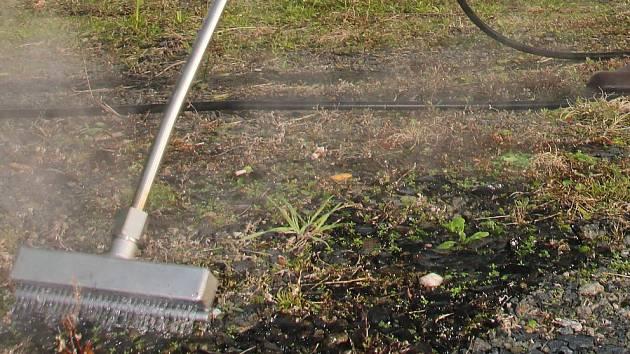 V Budějovicích částečně omezí stříkání herbicidem Roudupem