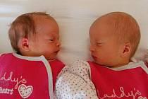Dvojnásobnou radost udělaly Lucii Markové a Davidovi Holcovi holčičky Natálka a Kristýnka. Narodily se 19. 8. v chomutovské porodnici. První na svět spěchala Kristýnka v 11:21 hodin (2,2 kg, 49 cm), čtyři minuty poté se narodila Natálka (1,9 kg, 44 cm).