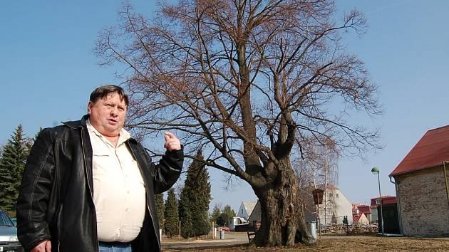 TADY PRO NĚJ MÁME MÍSTO. Sloup bude stát na travnatém prostranství vedle památné lípy. Na snímku starosta Josef Egermann.
