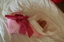 Marcela Ashley Dunková se narodila mamince Danuši Dunkové a tatínkovi Rudolfovi Dunkovi z Chomutova 16.4.2019 ve 22:01 hodin.