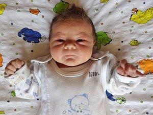 Martin Tomeček se narodil 14. března 2018 ve 22.08 hodin rodičům Karle Čížkové a Martinu Tomečkovi z Vintířova. Měřil 52 cm a vážil 3,53 kg.