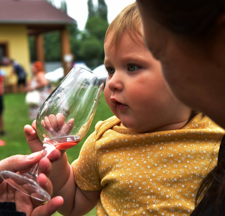 Vinné trhy v Březně u Chomutova