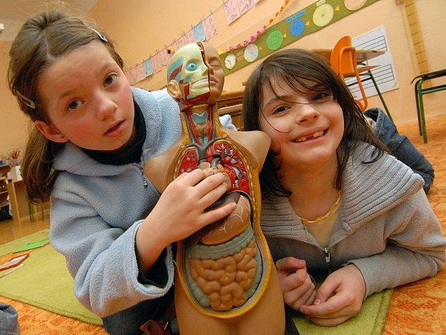 Školky a školy s výukovým systémem Montessori jsou velmi oblíbené.