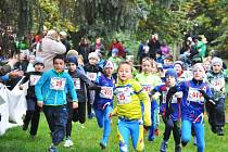 V sedmadvaceti věkových kategoriích vyběhlo na tratě přesně 481 běžců.