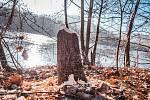 Kousek před Kadaní na řece Ohři se bobři snaží budovat svou hráz a pomalu si zde kácí drobné stromky, ale i větší stromy, které nechávají spadnout do koryta řeky.