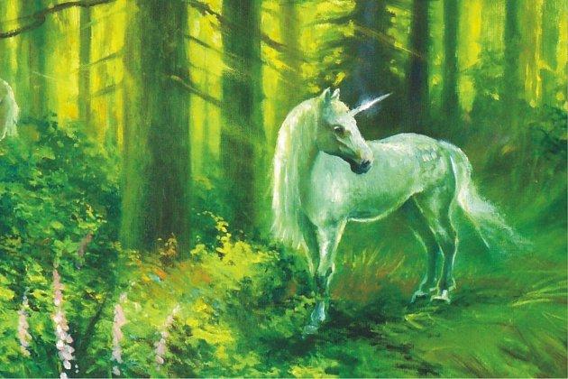 Obraz snázvem Les koupili přátelé Milana Tótha Vajnarovi, aby malíře podpořili ijinak než příspěvkem do veřejné finanční sbírky. Je na něm malířův oblíbený motiv - bájný jednorožec.