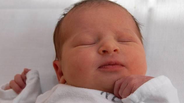 Viktorie Jelínková z Chomutova, narozená 11.11. 2007 v 11.55 hod. v Kadani; 47 cm,  2,9 kg.