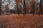 I v chomutovském městském parku je v současné době velký spad listí ze stromů.