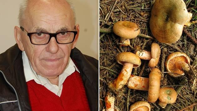 Mykolog Jiří Roth a snímek ryzce smrkového. Podle odborníka je dobrý naložený v octě nebo usmažený se slaninou.