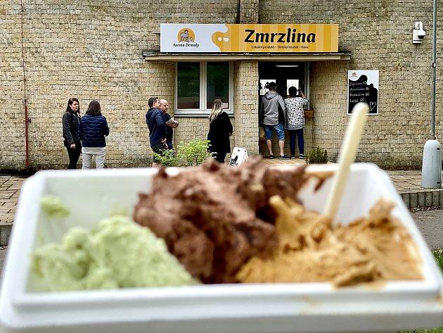Vprvní chomutovské zmrzlinárně mají zmrzlinu zdomácího kravského a kozího mléka.