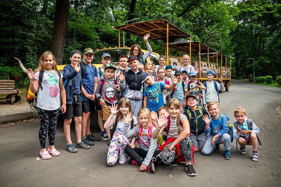 Příměstský tábor v Zooparku Chomutov.