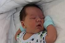 Denis Balog se narodil mamince Lucii Fojtíkové a Davidovi Balogovi z Chomutova 16.6.2019 v 0:59 hodin. Měřil 54 cm a vážil 3,85 kg. Životem jej bude provádět bráška David Balog (4 roky).