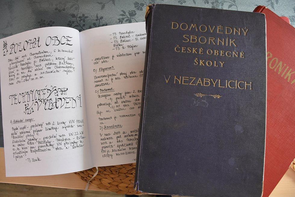 Obecní kronika, kterou vede Karolína Plchová od roku 2008. Jinak se dochovala jen školní kronika z roku 1930, paměti fotbalové TJ Nezabylice z části 70. a 80. let a jeden záznam kroniky z roku 1990.