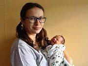 Vojtěch Vlnas se narodil mamince Kamile Špůrové a tatínkovi Vojtěchovi Vlnasovi z Klášterce nad Ohří 31.12. 2018 v 8:34 hodin. Měřil 50 cm a vážil 3,28 kg.