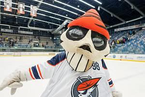 Piráti Chomutov, ilustrační hokeje.