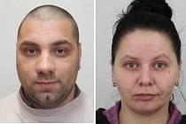 Policie pátrá po Václavu Cibulovi a Janě Helešicové