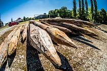 Dřevěné piloty z Kamencového jezera se promění na umění.