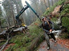 Říjnová vichřice stále vystavuje účty. Zákazy vstupu i zlámané stromy v lesích přetrvávají. Práce na odklízení stromů pokračují.