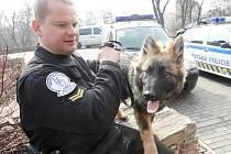 """Strážník Radek Vyhnálek a policejní """"slečna"""" Pinky. """"Zatím je s ní dost práce, je to ještě štěně,"""" směje se psovod. Věří ale, že v ní vzbudí kvality dobrého policejního psa."""