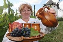 Skanzen Nová ves v areálu chomutovského Podkrušnohorského zooparku láká na sobotní slavnosti vína. Správkyně skanzenu Věra Stejná coby selka na vinici se džbánkem vína.