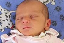 Malá Světlanka, vážící 2,66 kilogramu a měřící 47 centimetru, je dcerkou, kterou 23. srpna ve 20.46 hodin přivedla na svět Petra Kraheová z Kadaně v tamní nemocnici.