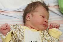 Pavlínka Ostopenková je dcera maminky Pavlíny Dvořáčkové z Jirkova. Dívku přivedla na svět v chomutovské porodnici 25. srpna ve 21.52 hodin. Malá vážila 3 kilogramy a měřila 49 centimetrů.