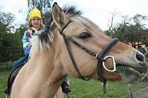 Jízdy na poníkovi, jedna z oblíbených atrakcí.