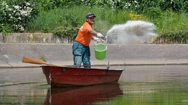 V Chomutově čistí půlhektarové jezírko na Březenecké bakteriemi.