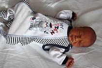Alexandr Svoboda se narodil mamince Denise Svobodové a tatínkovi Jaroslavovi Svobodovi z Kadaně 18. února 2019 v 11:19 hodin. Měřil 51 cm a vážil 3,65 kg.