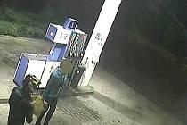 Záběr z bezpečnostní kamery na benzinové stanici.