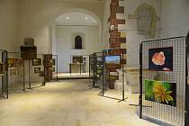V kostele svatého Bartoloměje právě probíhá výstava obrazů Miroslavy Ježkové a Janiny Kokeš.
